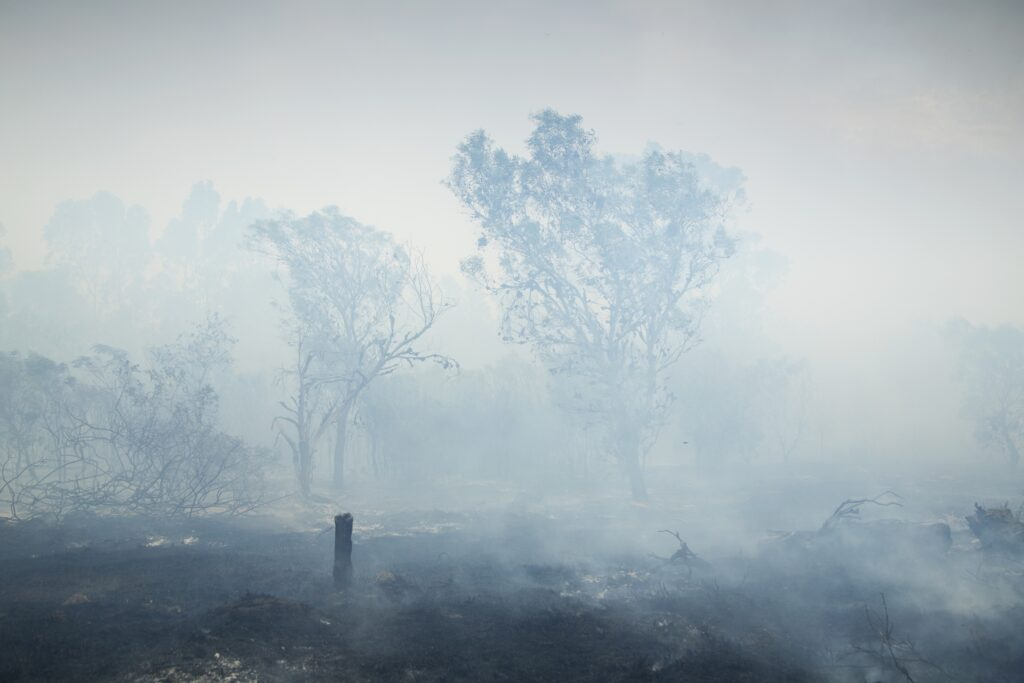 Are your clients prepared for the bushfire season?